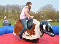 rodeo udlejning